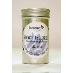 Eucalyptus globulus olie bio