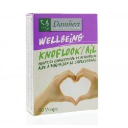 Knoflook-cholesterol supplement